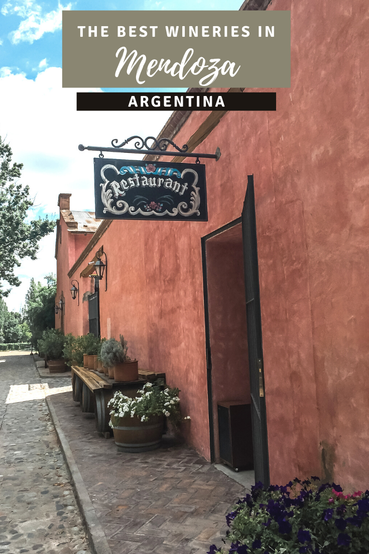 The Best Wineries in Mendoza, Argentina pin