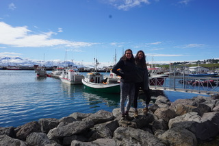 Iceland Road Trip - Whale Watching in Husavik