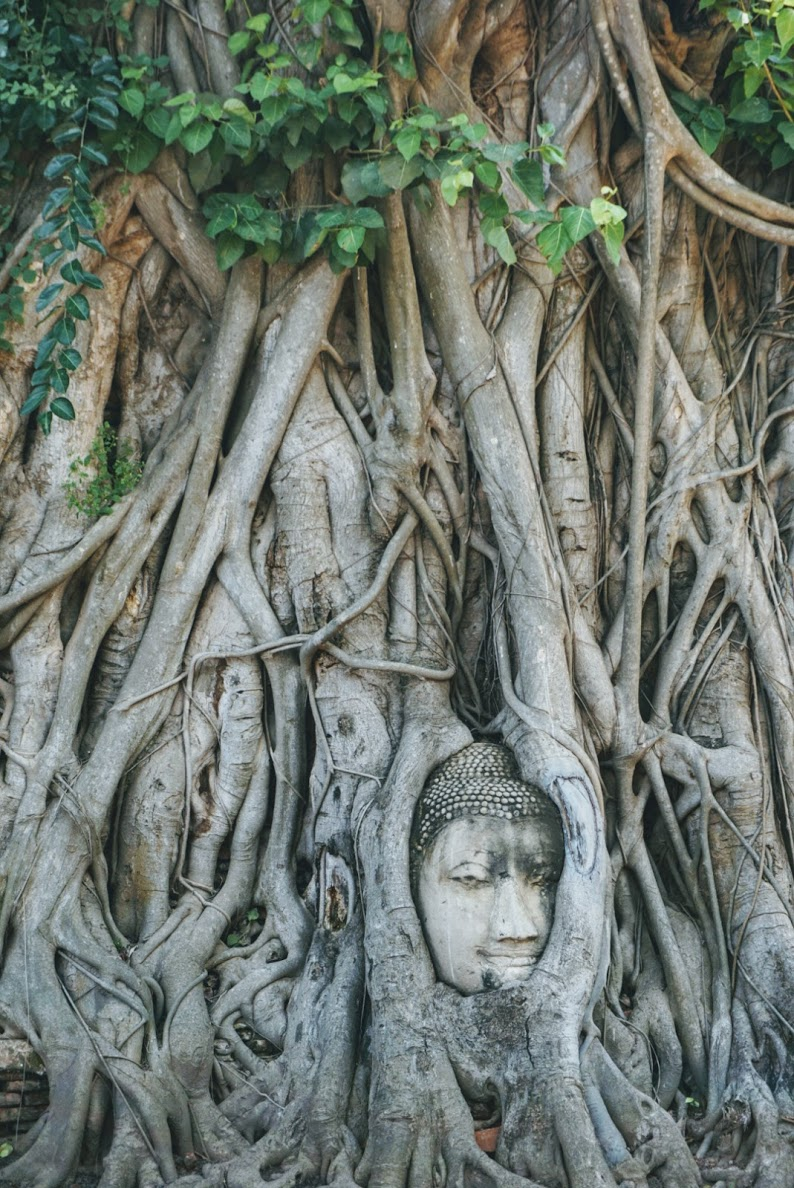 woman sculpture in tree in thailand