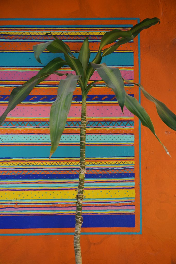 Mama's home hostel, Best hostels for tulum on a budget