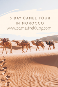 3 Day Tour Camel Riding in the Sahara Desert