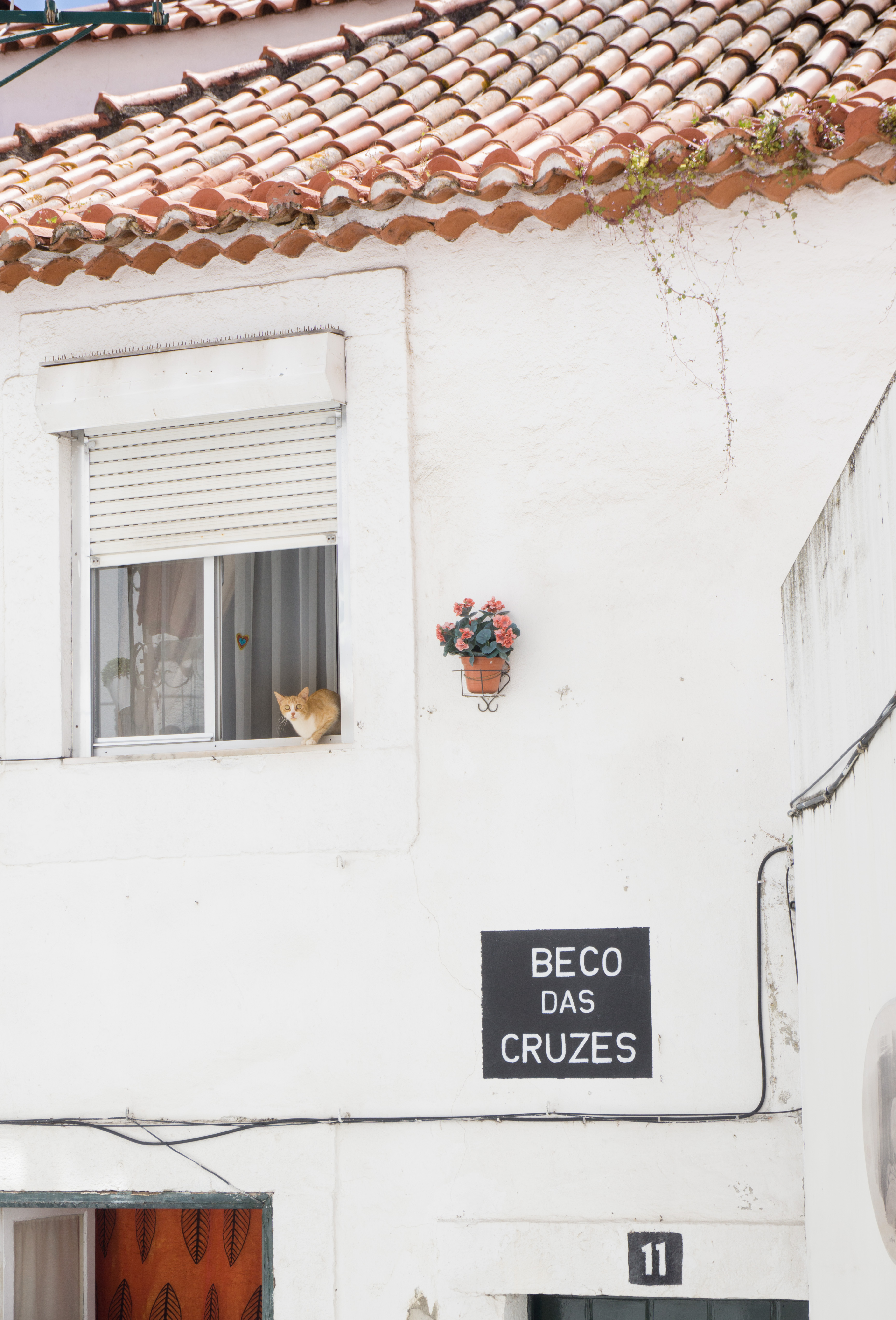 Visiting Lisbon - don't miss Lisbon area Alfama