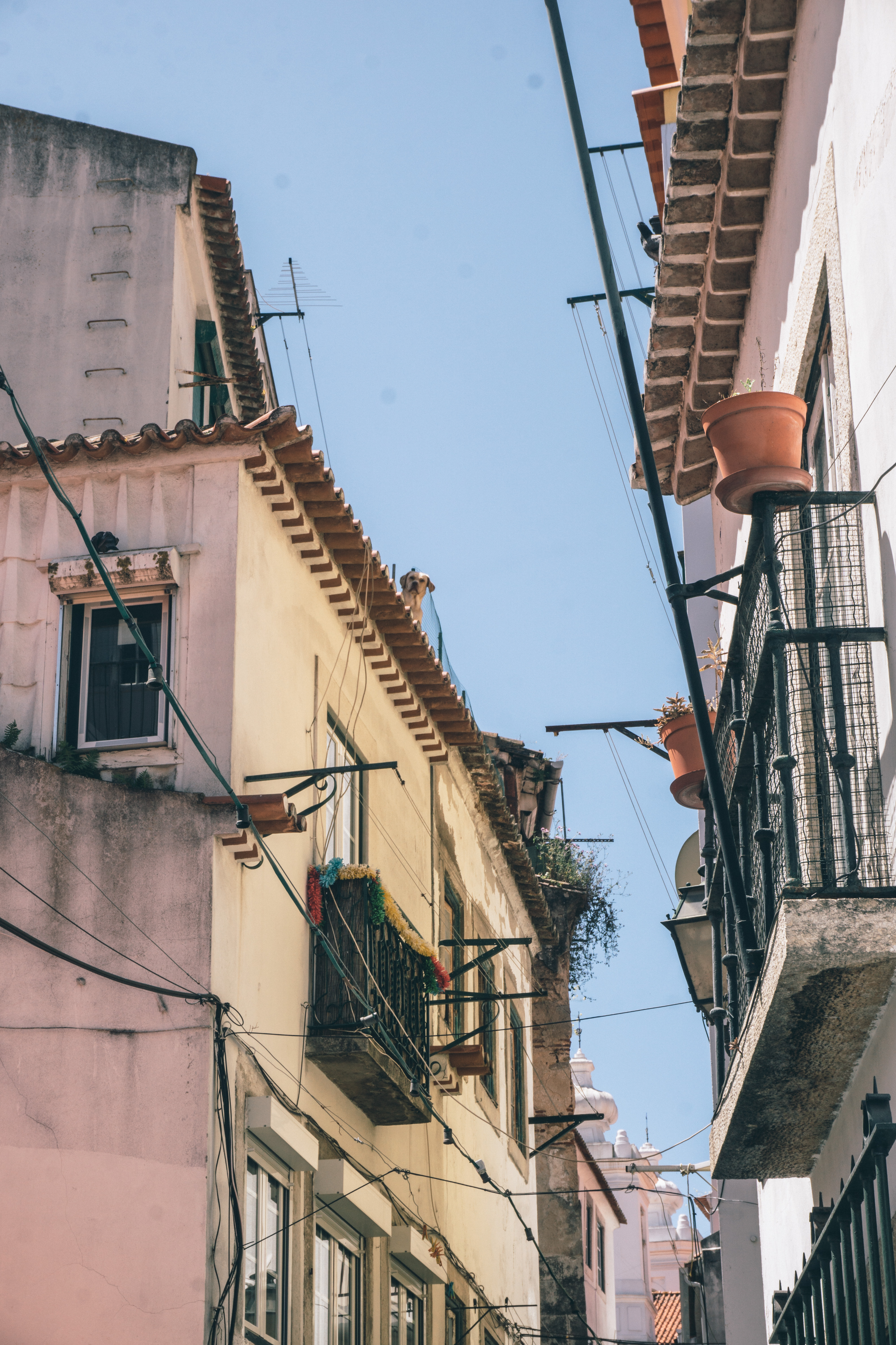 A don't miss Lisbon spot - the streets of Alfama
