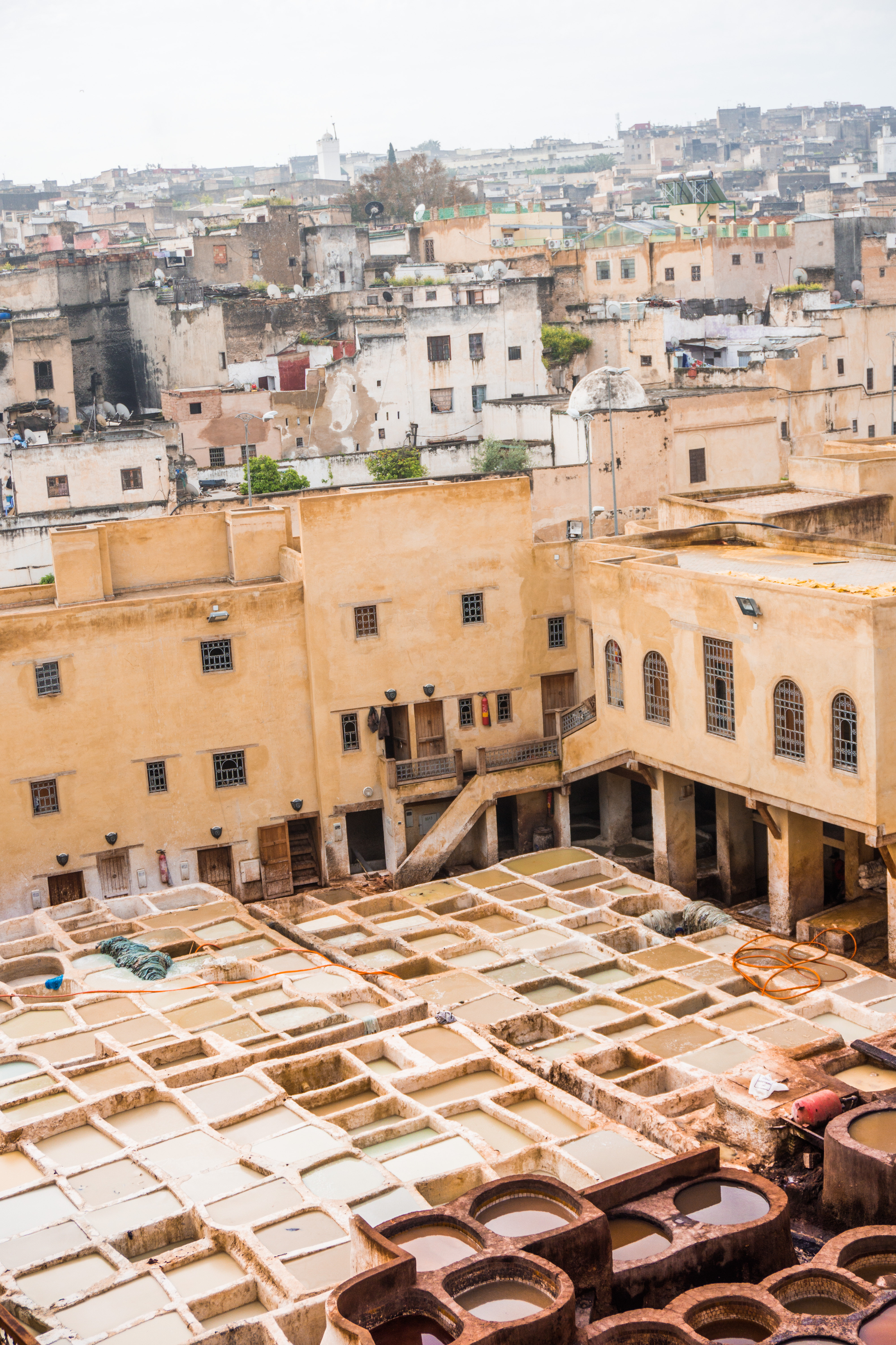 Visiting Fes, the best things to do - the tanneries at Shop 64