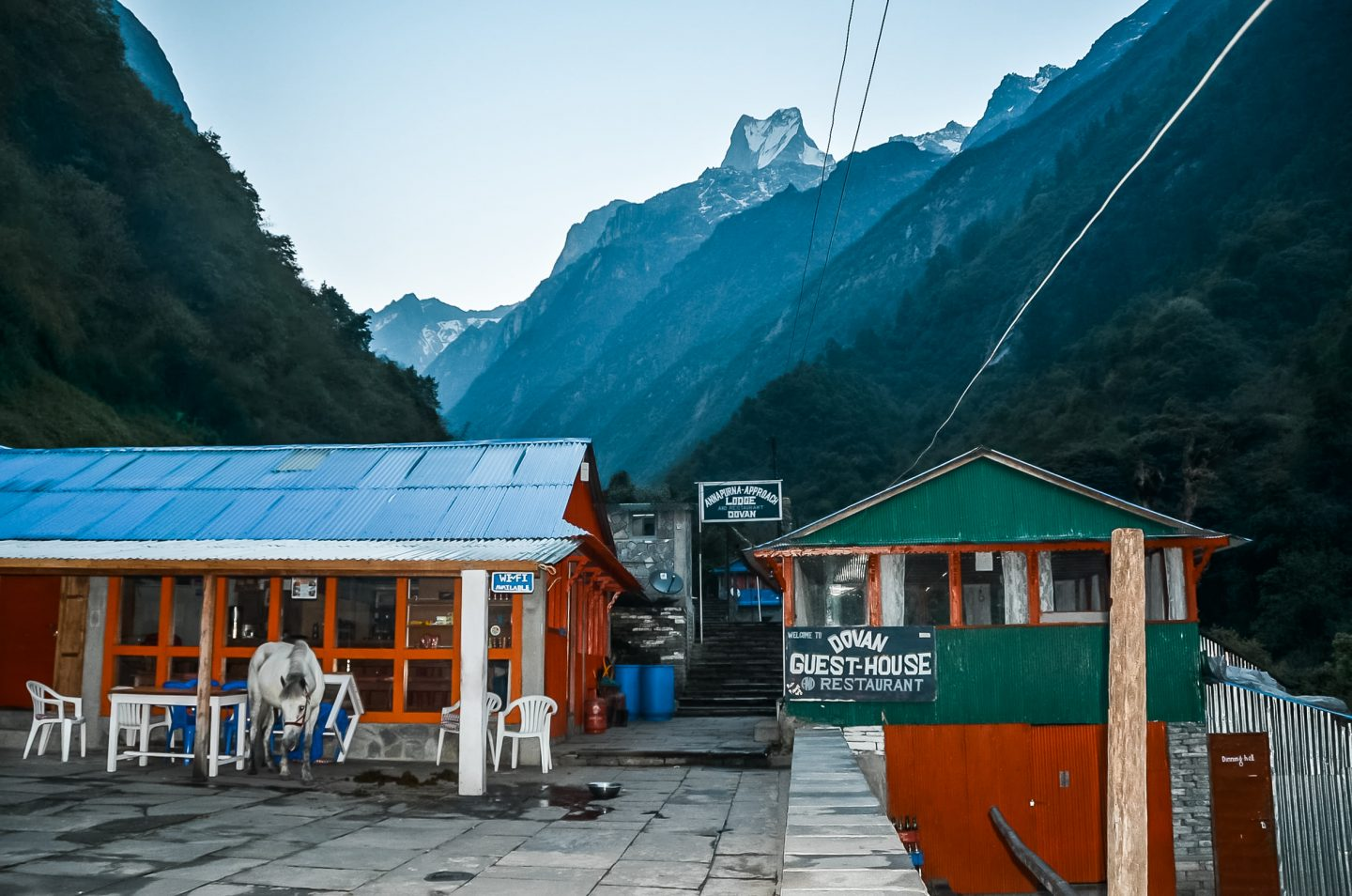dovan tea house on annapurna base camp trek