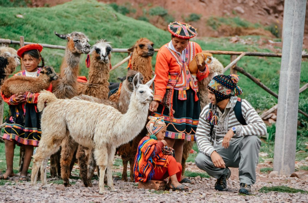 Why you need to visit Peru today - herd of Alpaca and local women