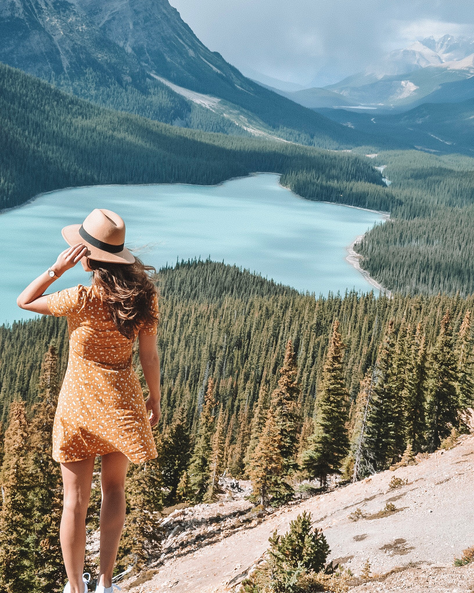 Best Hikes in Banff - Peyto Lake