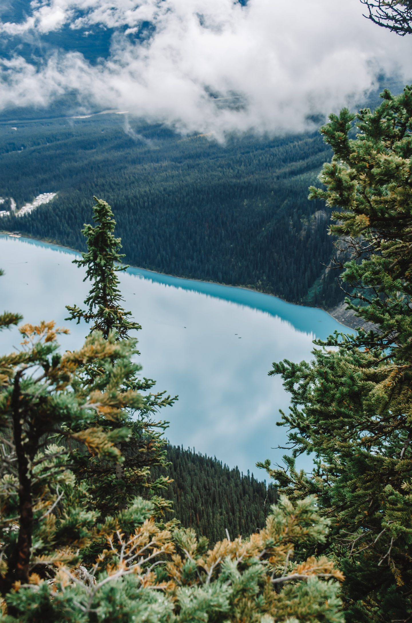views of lake louise from above