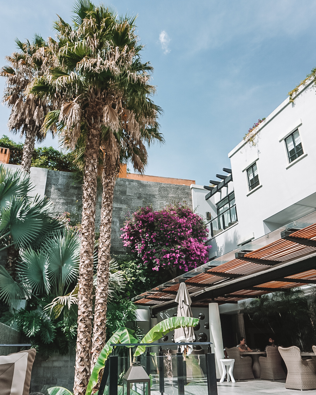 Hotel Matilda - best city hotel in mexico