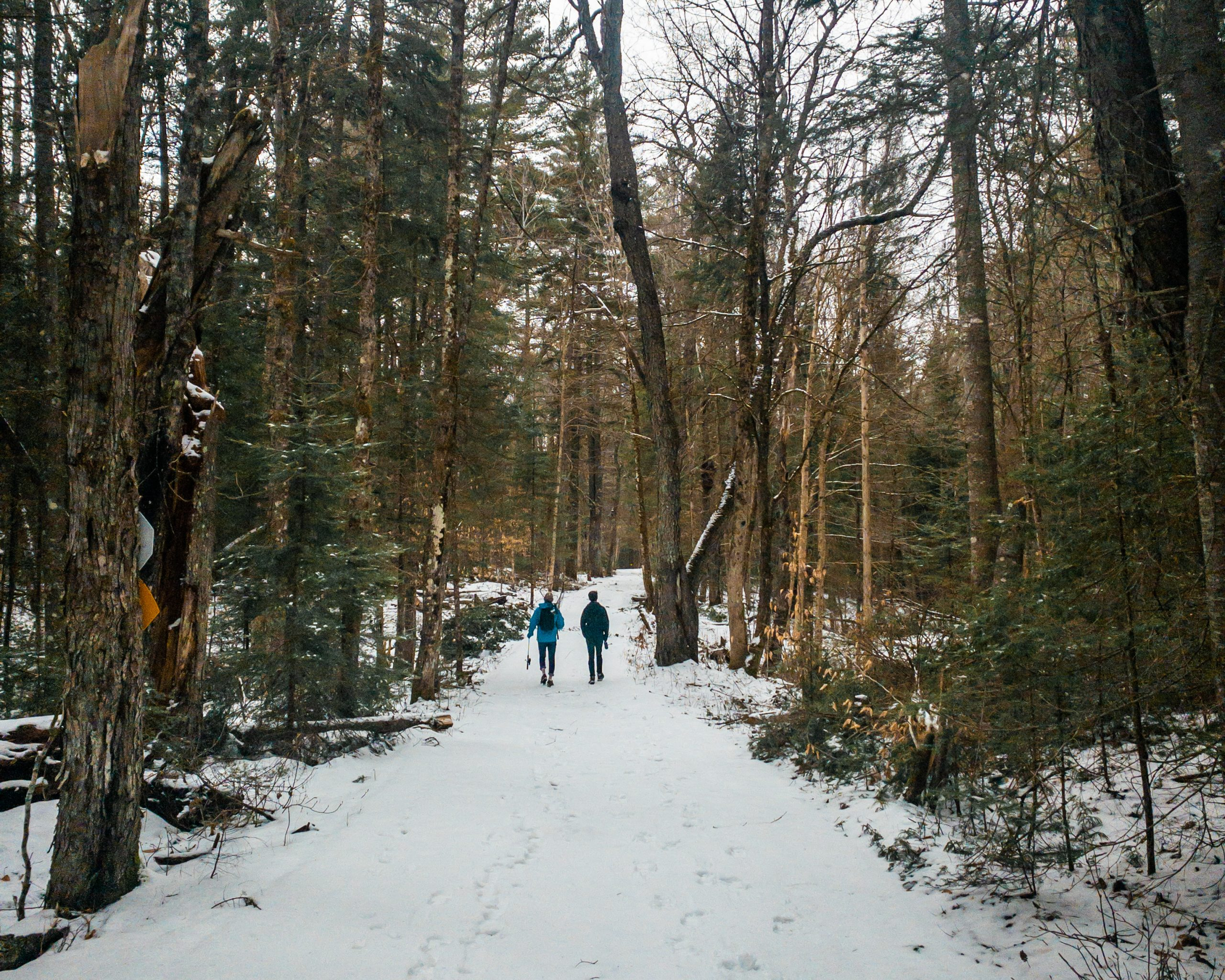 Hikes near old forge, new york
