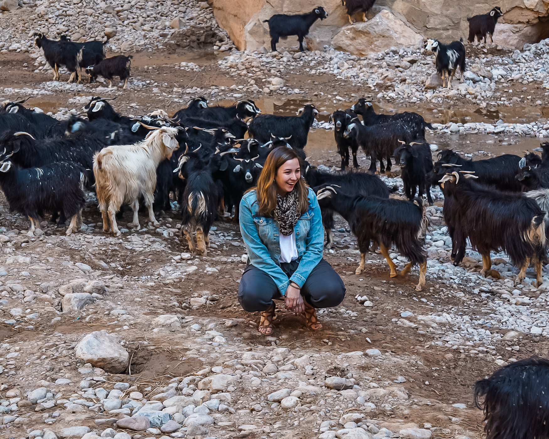 girl with goats on sahara desert tour on morocco itinerary