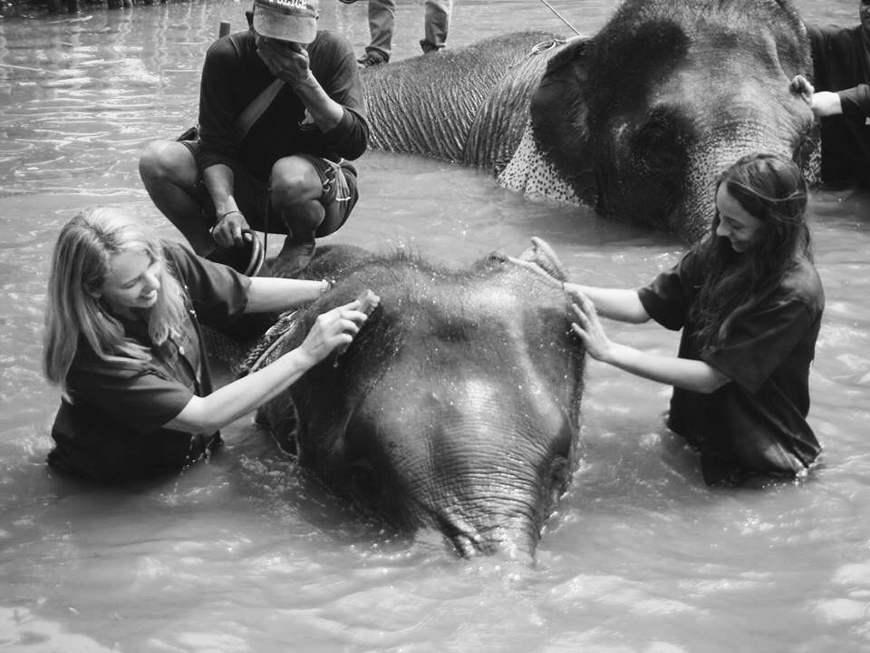mother daughter vacations in thailand washing elephants
