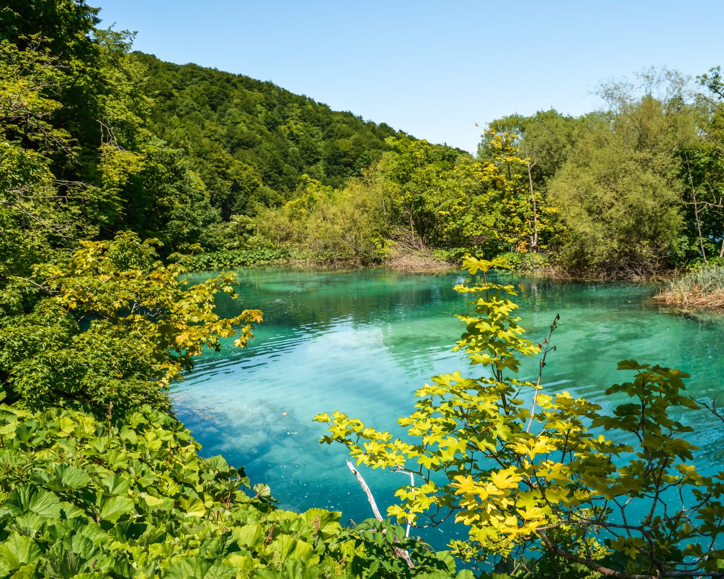 Plitvice Lakes National Park in May