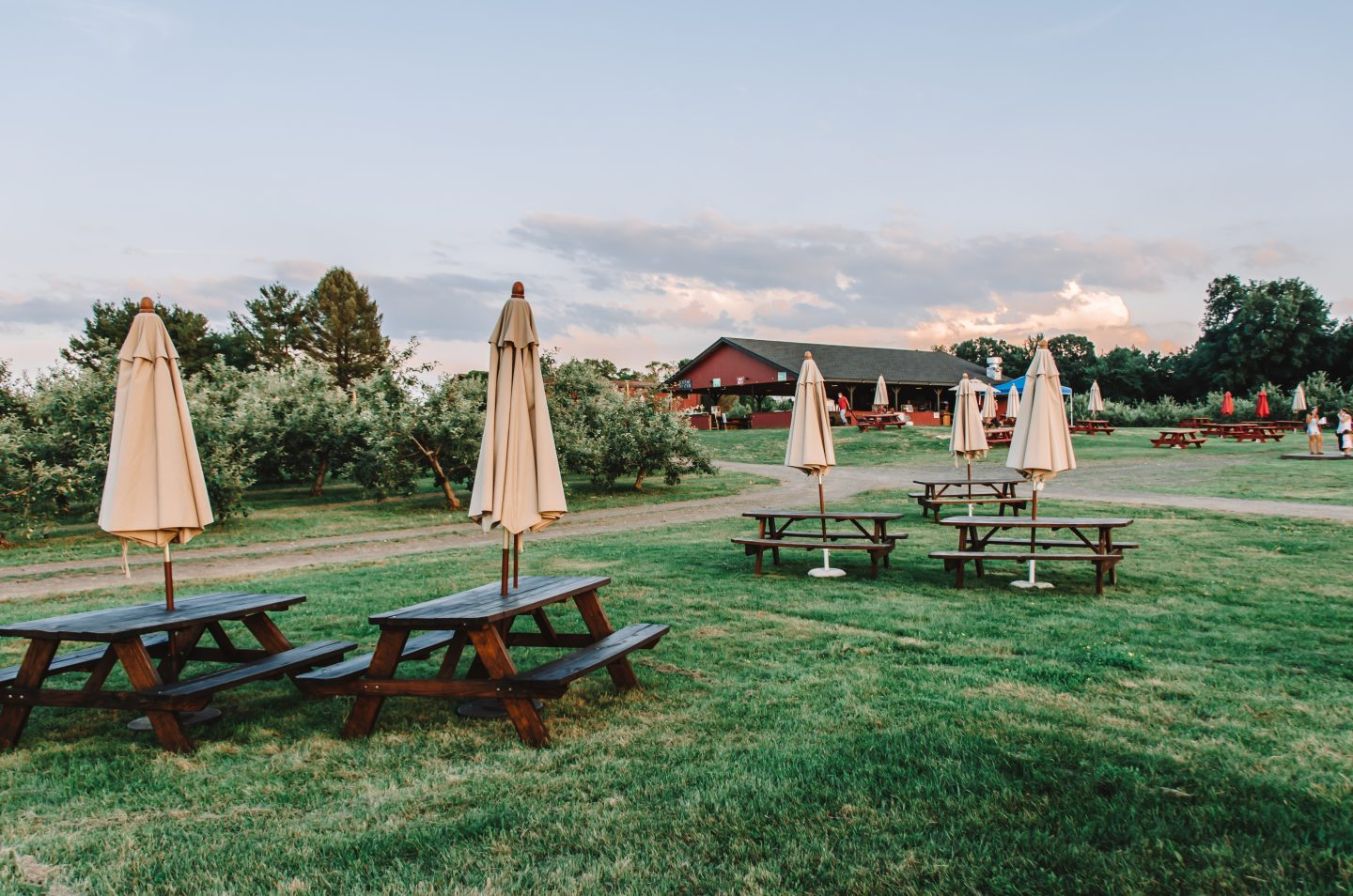 Brooklyn Cider House in New Paltz, NY lawn