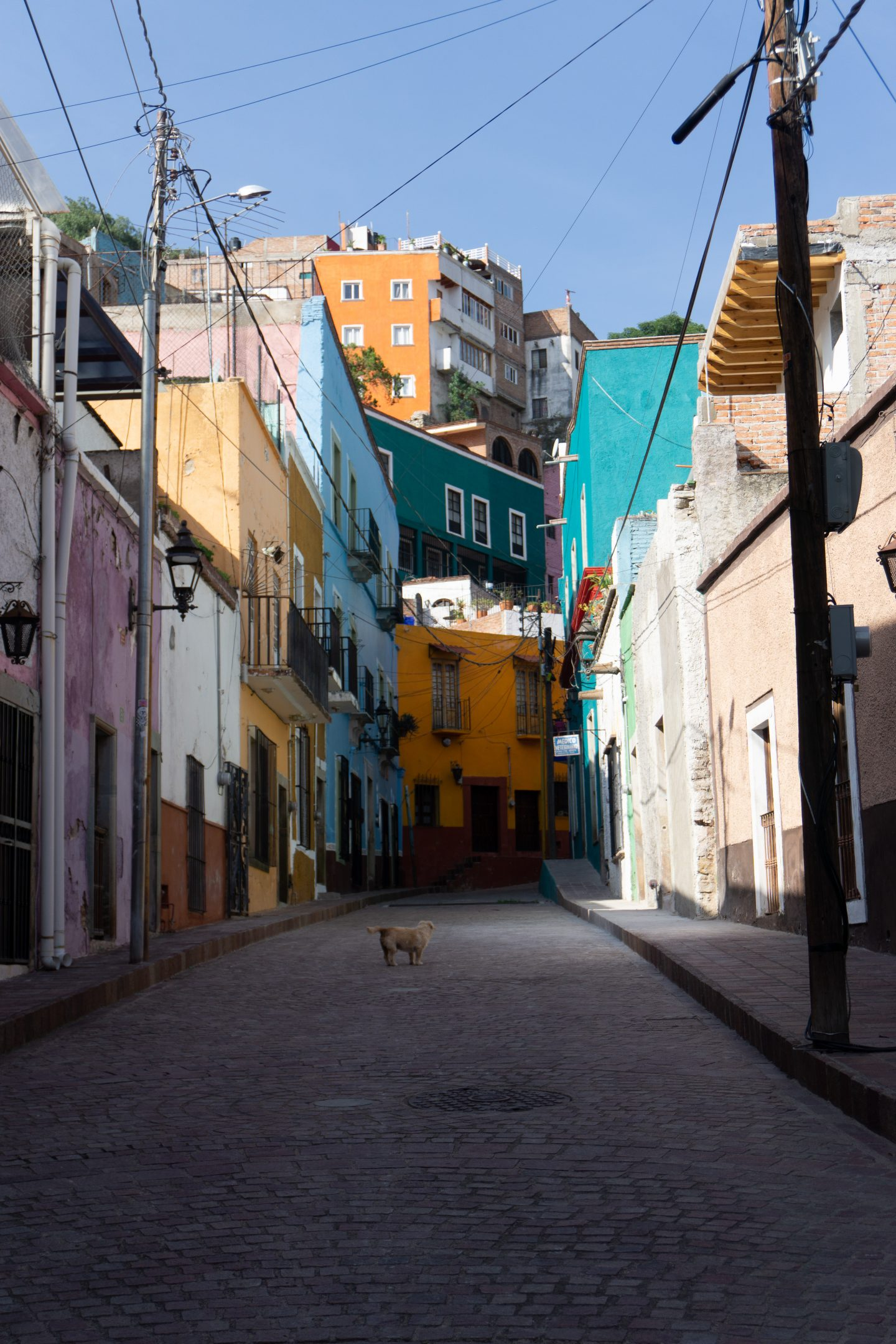 sample image of colorful guanajuato for lightroom travel presets