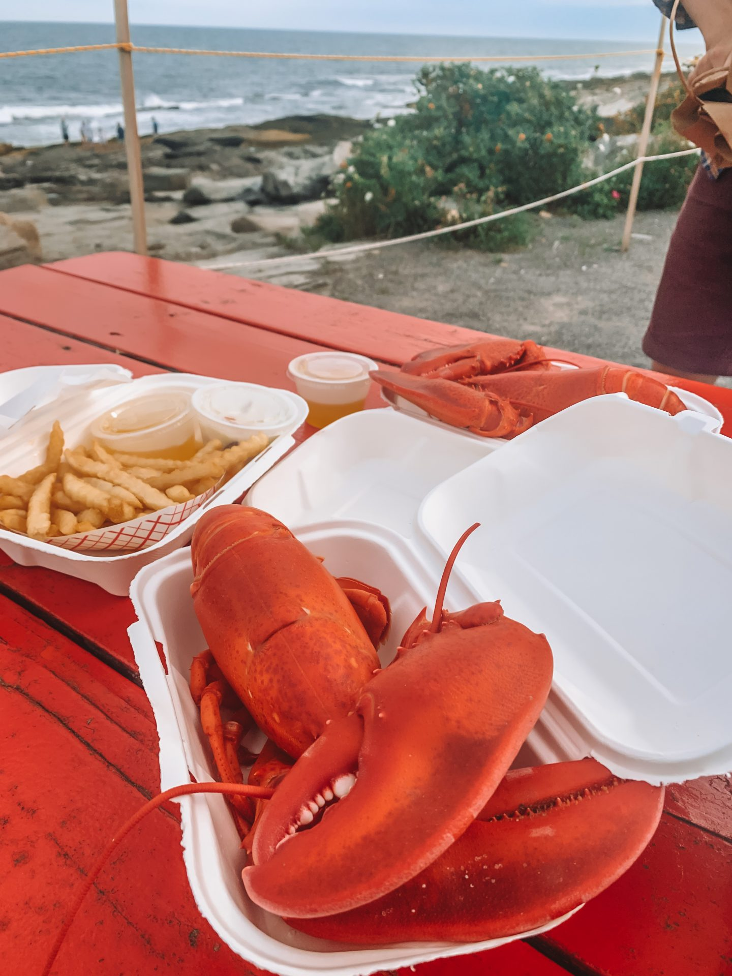 lobster dinner from lobster shack at two lights in portland maine