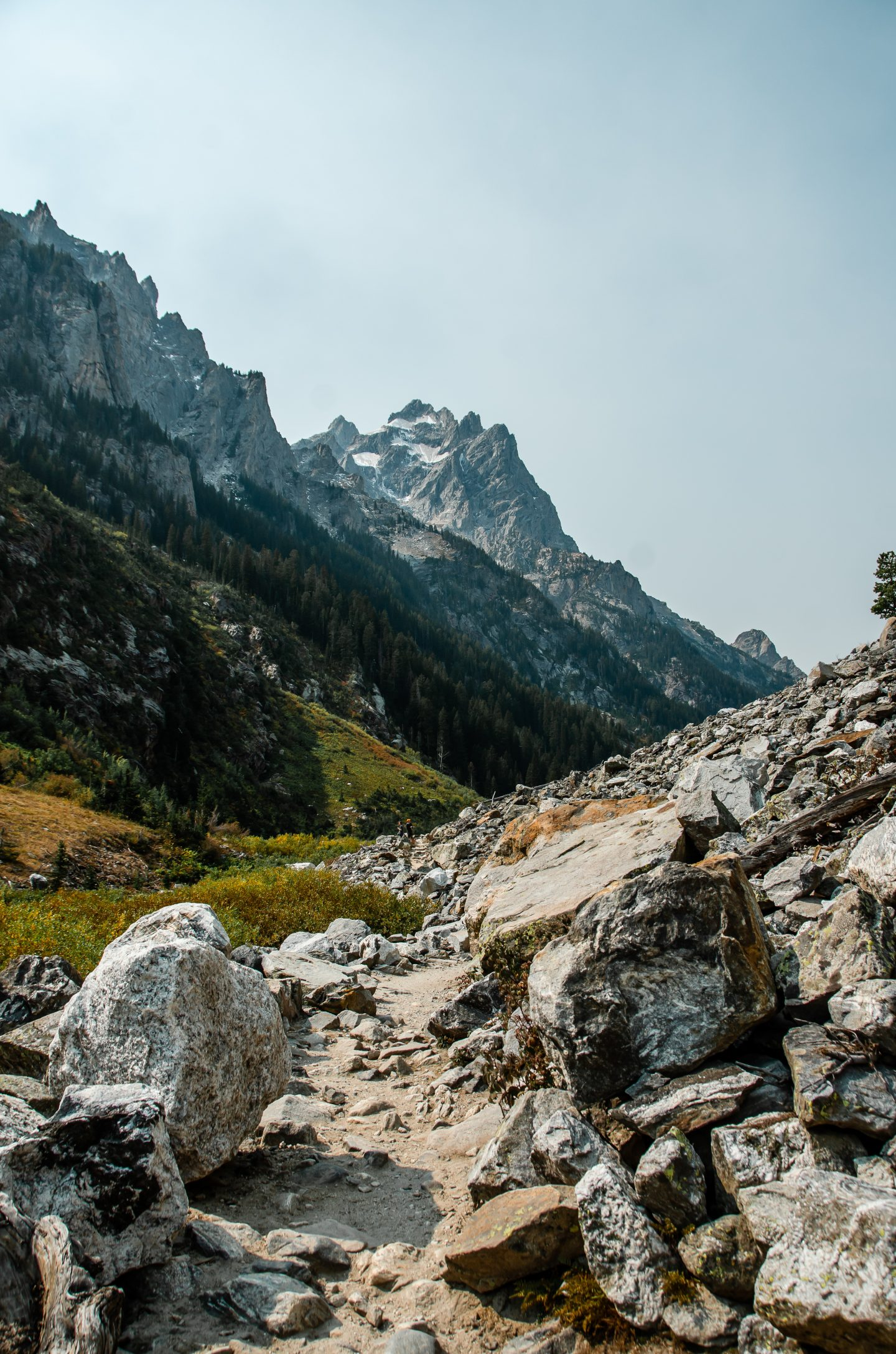 Hiking in Cascade Canyon in Grand Teton National Park