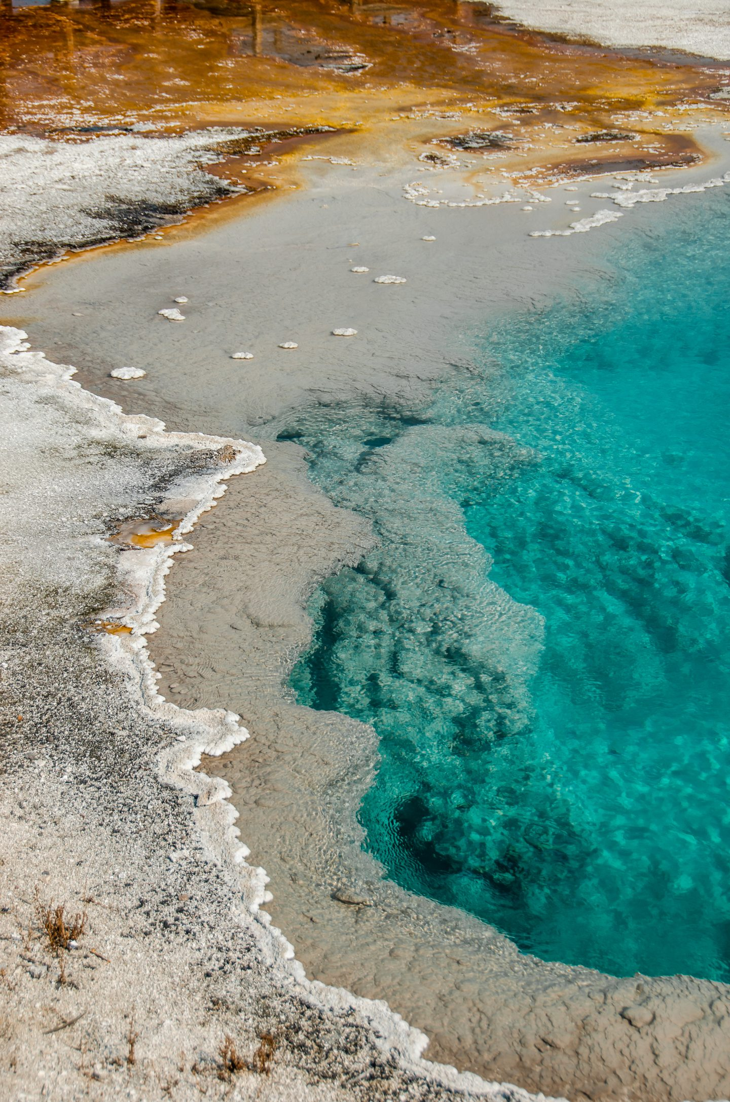 west thumb yellowstone geothermal pools