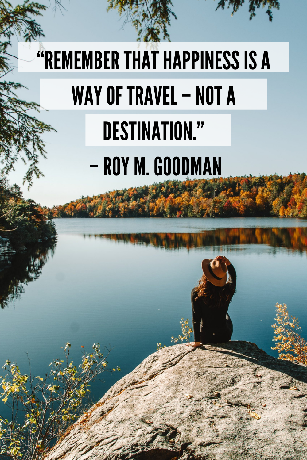 solo traveler quote by roy goodman