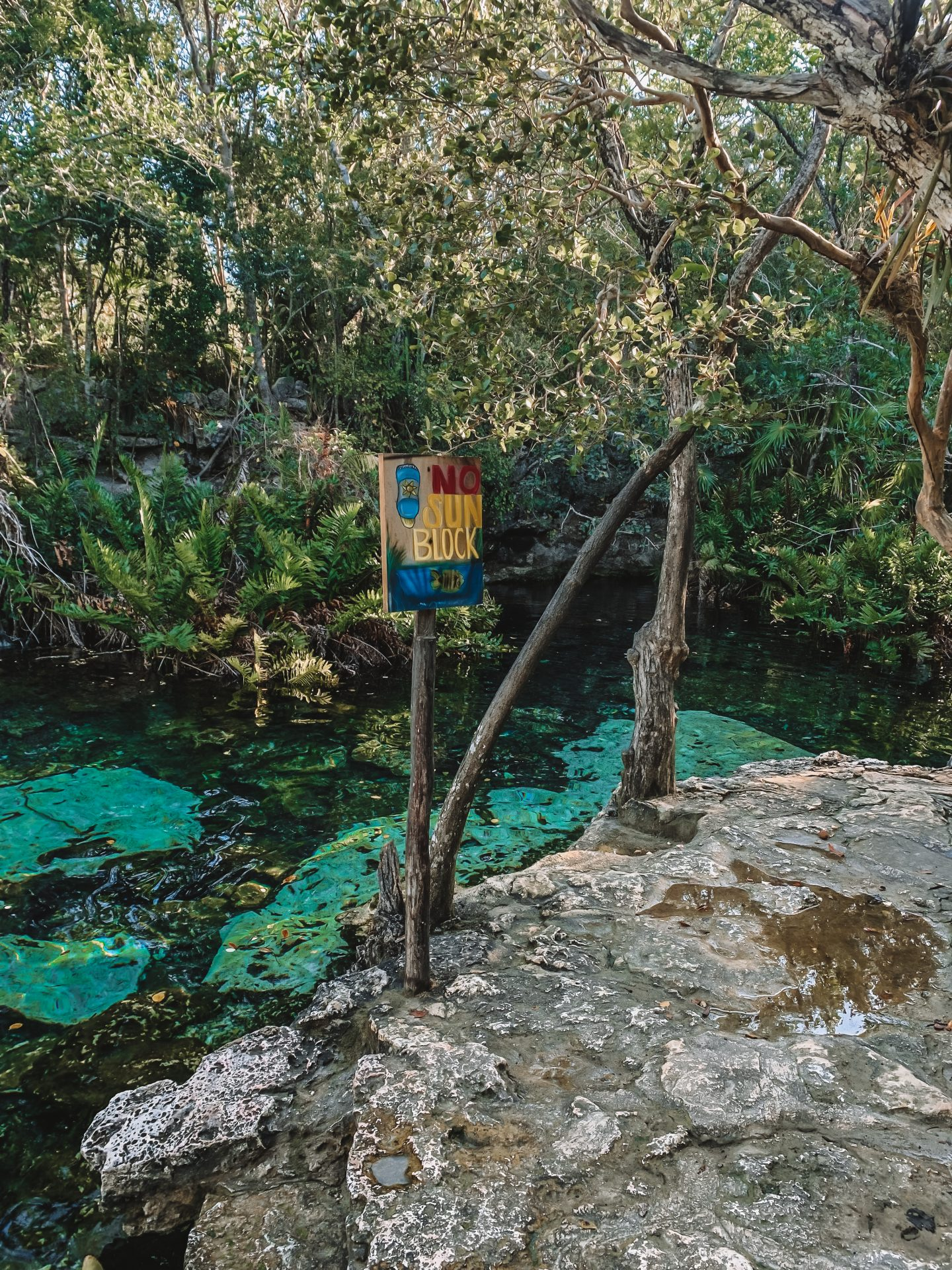 no sunscreen allowed at cenotes in mexico