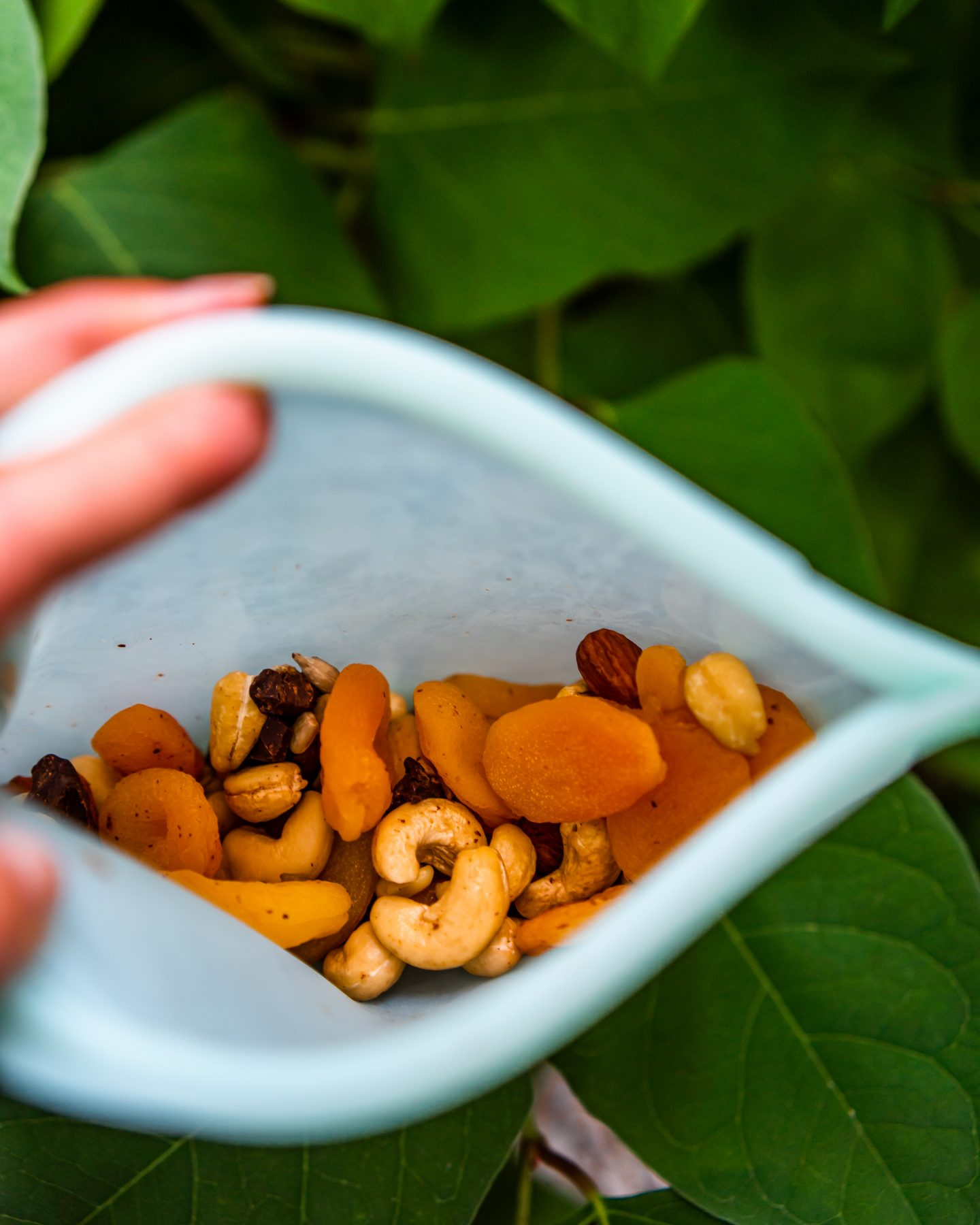 trail mix for hiking